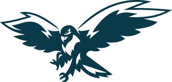 Hawks View mascot - hawk