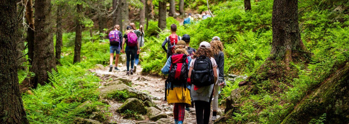 groups of children hiking through forest